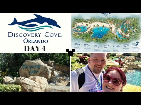 Walt Disney World 2018  Day 4  Discovery Cove vlog & road trip... but where to?