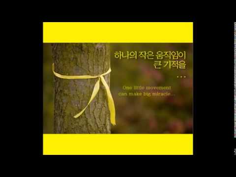 A thousand winds ,Yellow ribbon campaign
