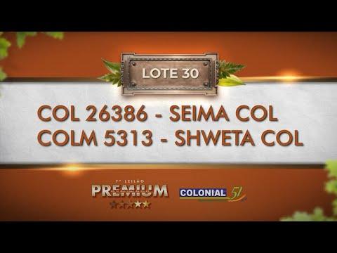 LOTE 30   COL 26386, COLM 5313