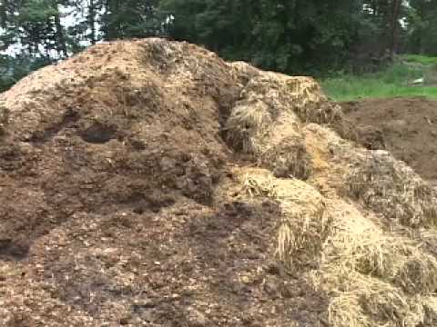 Animal Waste Management on Small Livestock Farms
