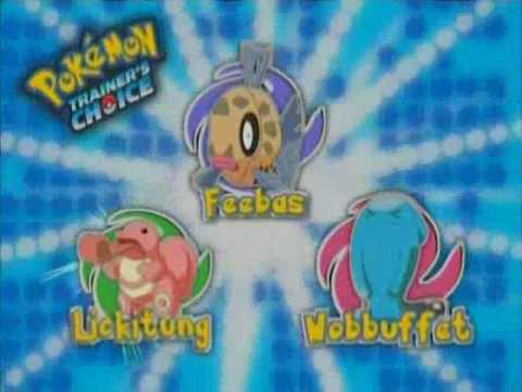 pokemon ash vs morrison