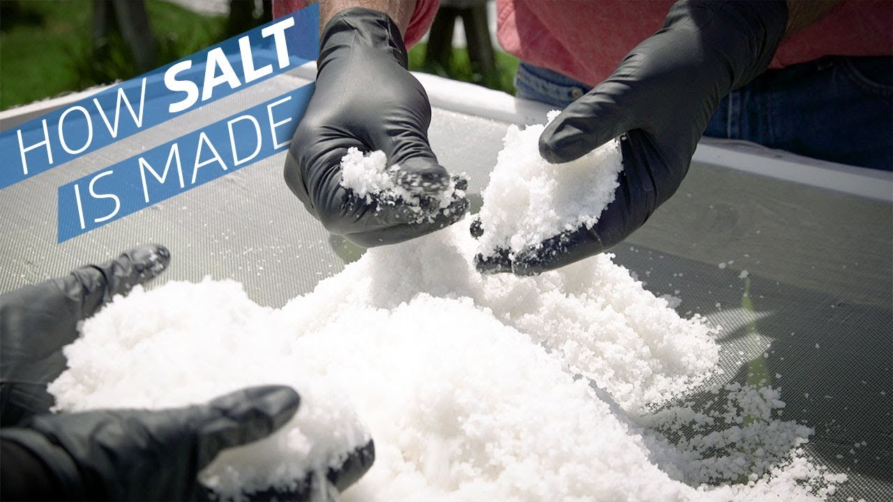 Where Does Salt Come From? — How to Make It