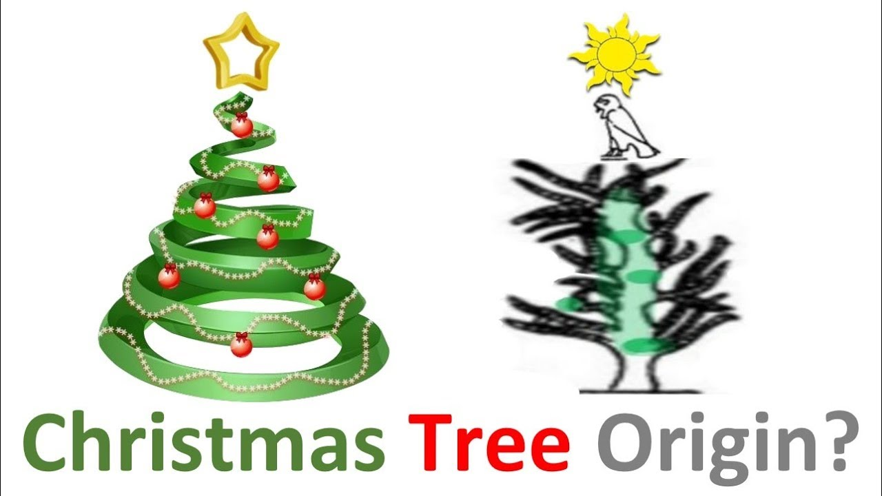the true origin of the christmas tree - Origin Of Christmas Tree
