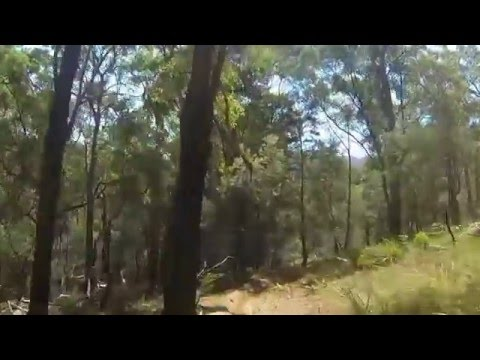 Transmoto 12 hr 2016 @ Buckenbowra Batemans Bay NSW