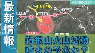 最新情報、気になるニュース、エンタメ、スポーツ 箱根山火山活動 噴火...