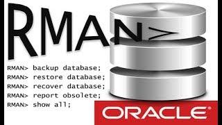 Полное резервное копирование и восстановление базы данных Oracle 11c (RMAN)