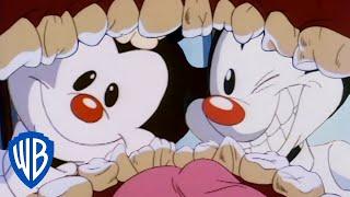 Animaniacs | The Worst Dentists | Classic Cartoon | WB Kids