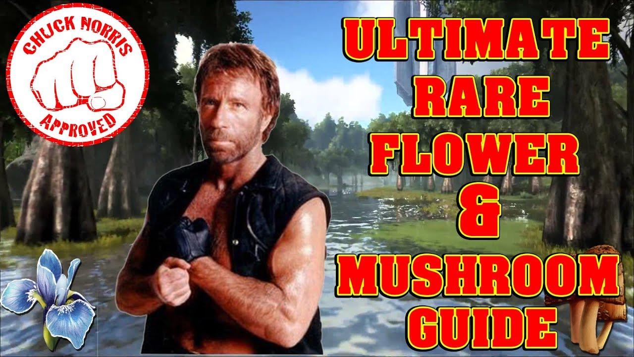ARK ULTIMATE RARE FLOWER & MUSHROOM GUIDE!