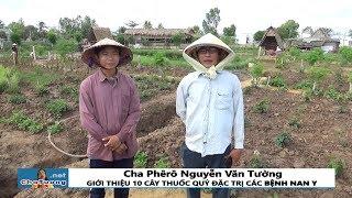 CHA TƯỜNG GIỚI THIỆU 10 CÂY THUỐC QUÝ ĐẶC TRỊ CÁC BỆNH NAN Y | Cha Phêrô Nguyễn Văn Tường