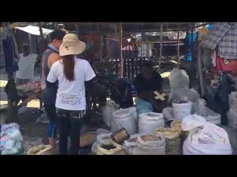 Haiti mission trip 2015