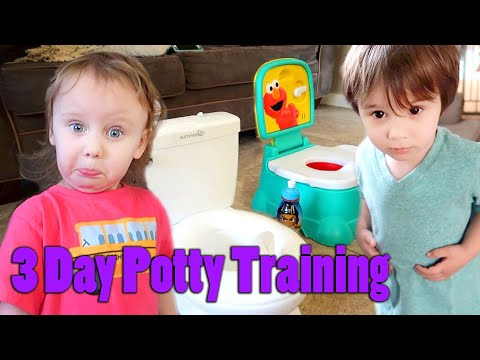 3 Day Potty Training Method With TWINS!