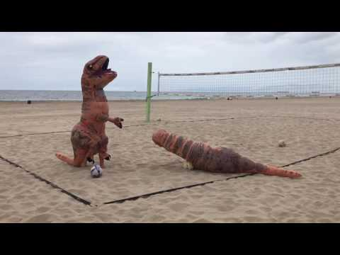 T Rex Beach Volleyball