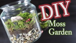 DIY Moss Terrarium:  How To Make A Moss Garden