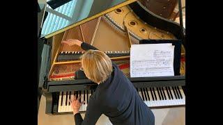 """Lisa Emenheiser performs """"Eine Kleine Mitternachtmusik"""", Mvt 5, """"Incantation"""""""