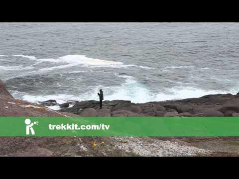 Newfoundland Part II - History and Hops