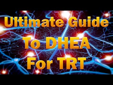 How Does DHEA Effect Testosterone Levels, DHEA Supplements, DHEA Benefits