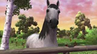 Horse life 2 Pc -#1- Il mio cavallo Gemini [Gameplay ITA]