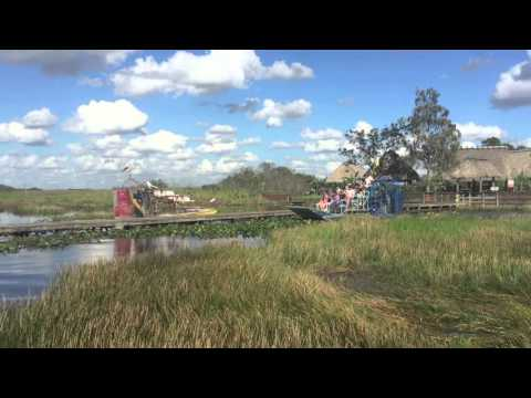 Private Jeep Tour and Airboat Adventure in the Everglades - Video