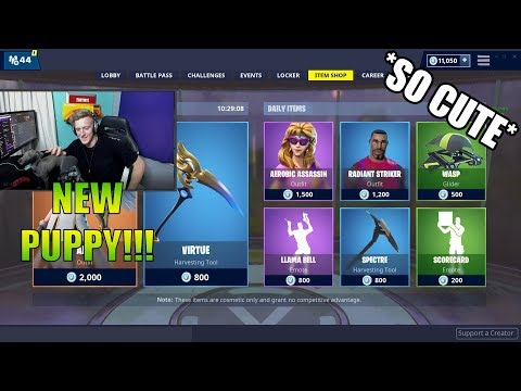 TFUE HAVE NEW PUPPY!!! (Fortnite Battle Royal Funny Clips)