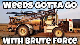 Bad Weeds? Bring On The BRUTE!