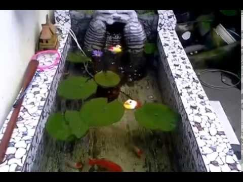 Diy my small fish pond youtube for Diy fish pond