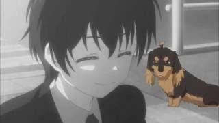 Пёс и ножницы-верный друг