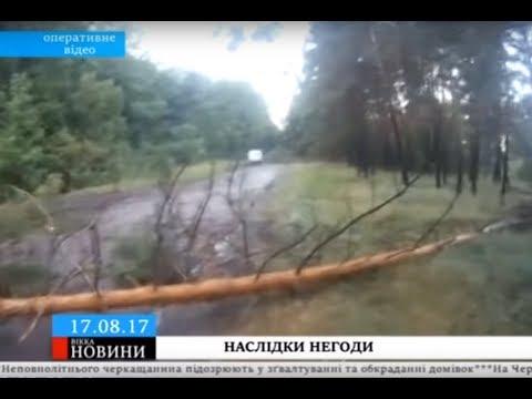ТРК ВіККА: Повалені дерева та непроїзний шлях: такі наслідки нічної негоди на Черкащині