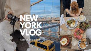 ВЛОГ неделя в Нью Йорке с друзьями Whole Foods шоппинг и американский фастфуд