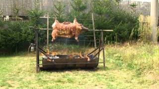 diy pig grill how to roast a whole pig recipe