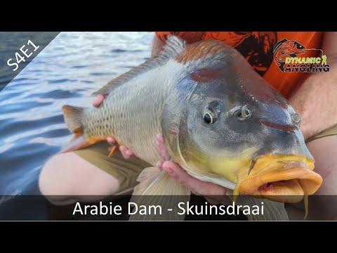 Arabie Dam S4E1 (Skuinsdraai)