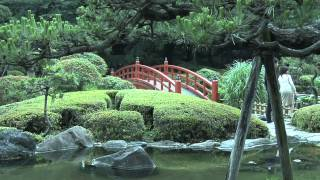 Japanese Garden In Tokyo, Japan With Waterfalls, Bridge, Miniature Landscapes And Bonsai Trees