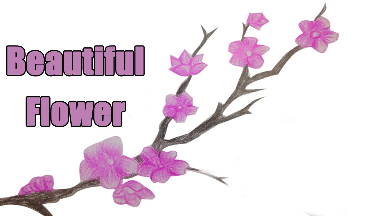 How to draw a beautiful flower drawing flower art picture youtube how to draw a beautiful flower drawing flower art picture izmirmasajfo
