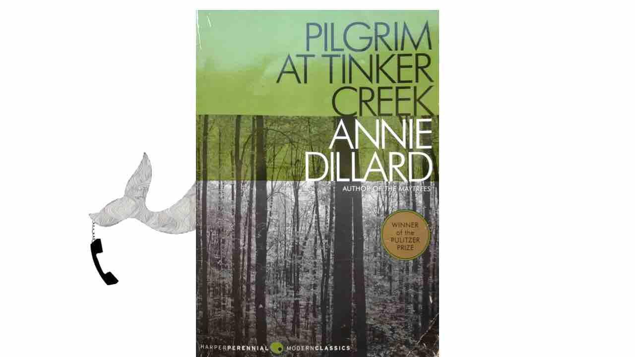 pilgrim at tinker creek Pilgrim at tinker creek | annie dillard | isbn: 9781848250789 | kostenloser  versand für alle bücher mit versand und verkauf duch amazon.