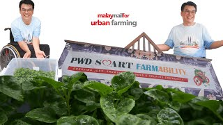 Malay Mail For : Urban Farming