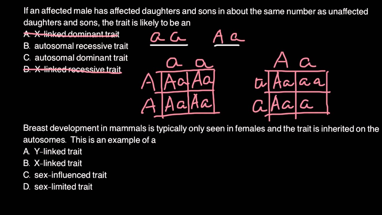 How To Solve Genetics Problems With Punnett Square
