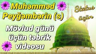 Təbrik videosu - Muhəmməd peyğəmbərin (s) mövlud günü üçün (Status üçün super təbrik videosu)