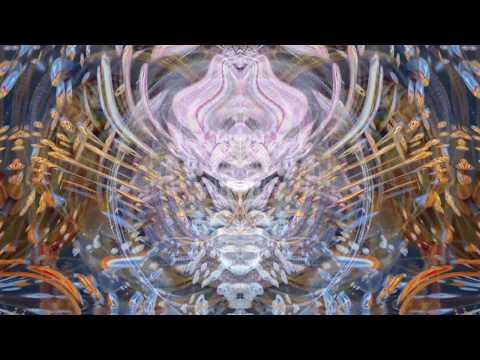 Tipper Ambient Set @ CoSM Alex Grey Art HD