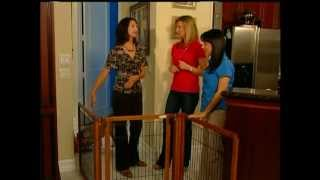 Eco-friendly Pet Gate With Amy Robinson