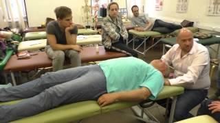 Висцеральная жидкостная остеопатия - больше чем хиропрактика и массаж внутренних органов.