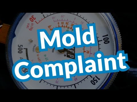 Mold Complaint | Clean Coil & Check System
