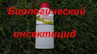 видео Инструкция по применению препарата Зубр: боремся с колорадским жуком