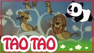 Tao Tao - 3 - הנחש ומרבה רגליים