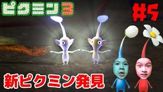 電気ビリビリ~!新ピクミン発見!☆ピクミン3デラックス#5himawari-CH