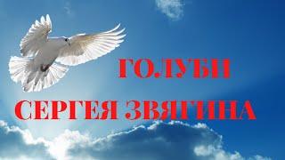 Николаевские голуби Звягина Сергея! Воронежская область!