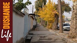 Осень в Душанбе #3 (Поворот на пивзавод, бывший Индустриальный техникум, киностудия ''Таджикфильм'')