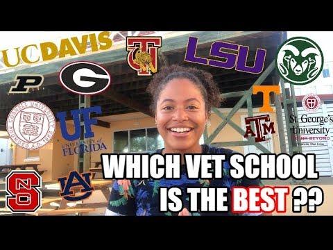 what-vet-school-is-the-best??-w/-adri-the-vet-student