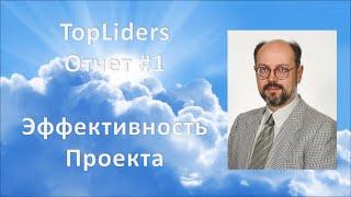 Эффективность проекта TopLiders . Целевой трафик ВКонтакте.