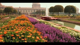 Mughal Gardens are open for the public. All are invited to visit the annual Udyanotsav