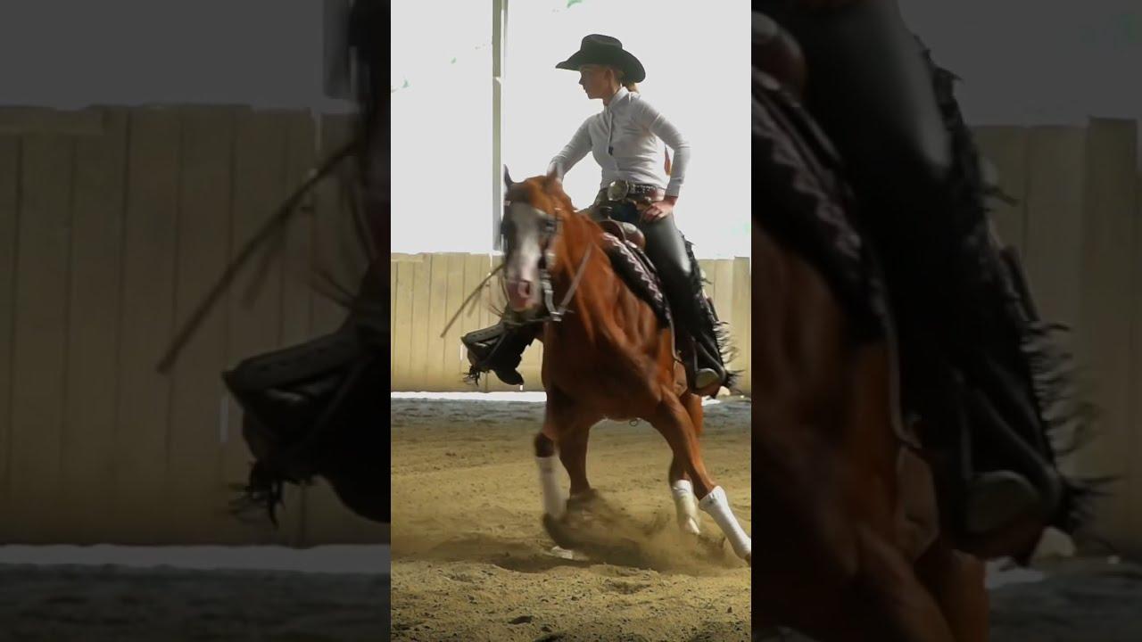 SPORT TV22: Spektakulärer Spin beim Reining - Westernreiten #shorts