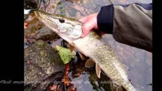 Pêche aux leurres, les Settons